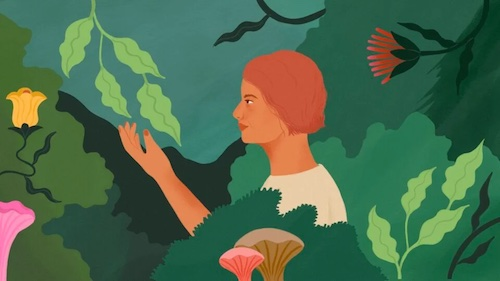 On Cancer and the Natural World